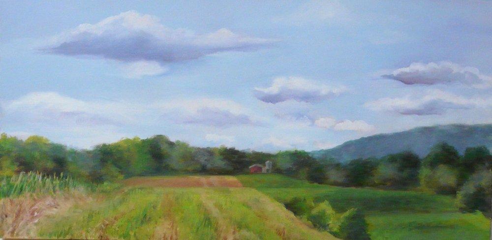 """""""Rolling Fields"""""""
