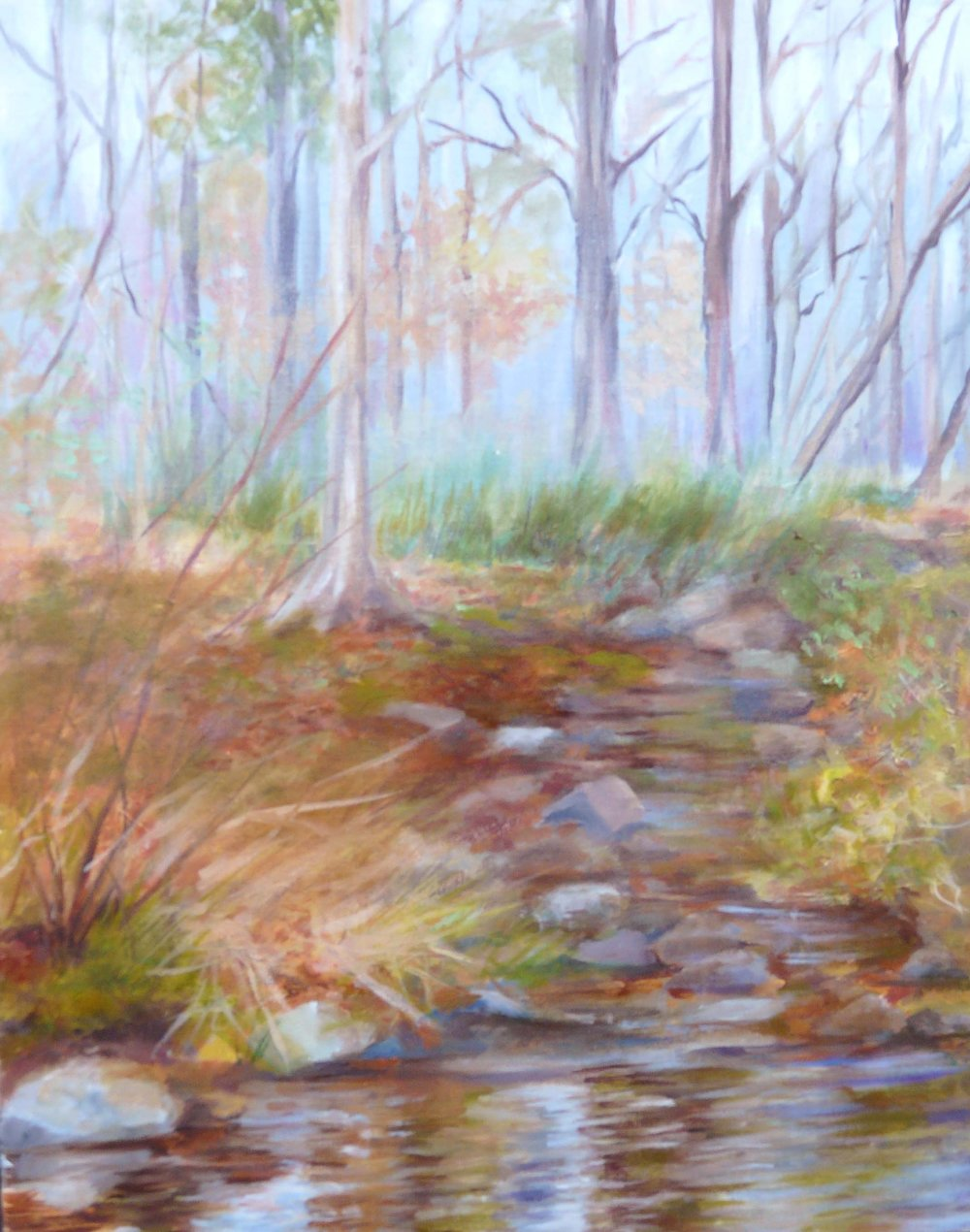 """New Hope Creek"""