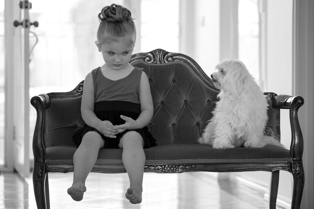 cheeky-puppy.jpg