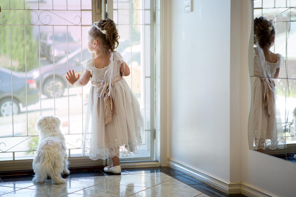 flowergirl-puppy.jpg