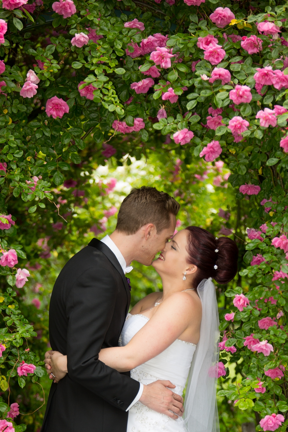 kissing-under-the-roses.jpg