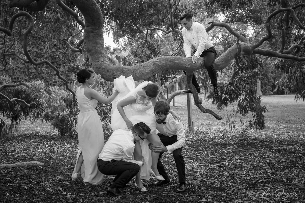 getting-bride-into-the-tree.jpg