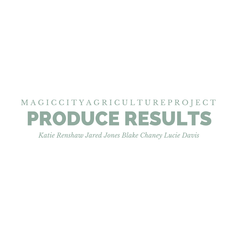 Design letterhead for Magic City Agriculture Project's 2015 Project Proposal.