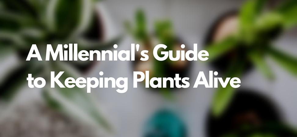 Millennial's Guide.jpg