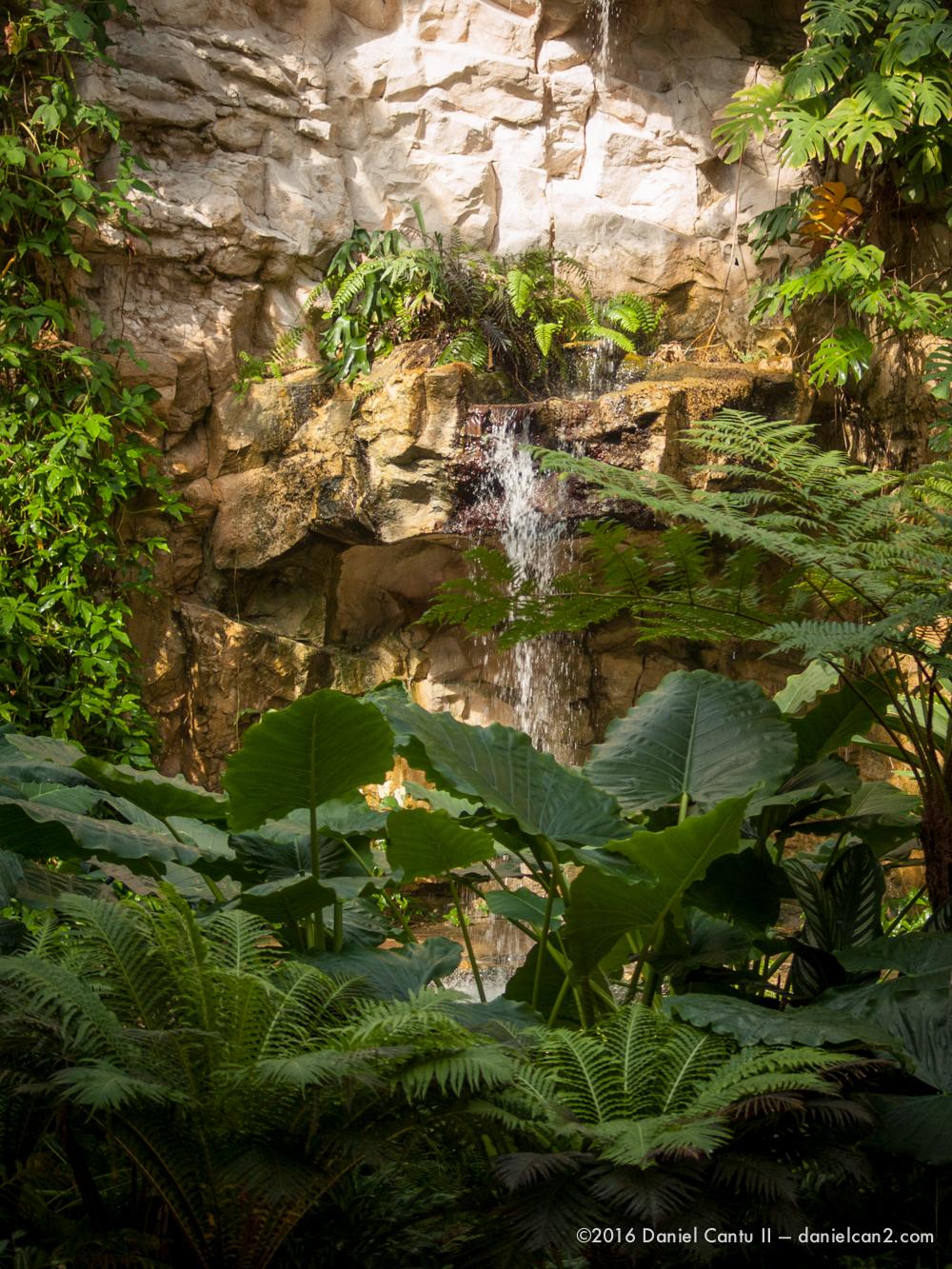 Daniel-Cantu-II-Botanical-Gardens-Oct-2016-52.jpg