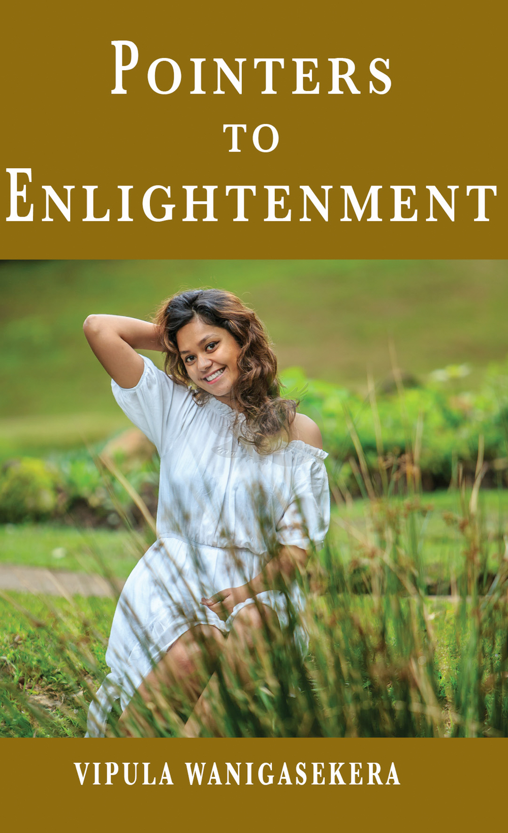 Pointers to Enlightenment cover final2.jpg