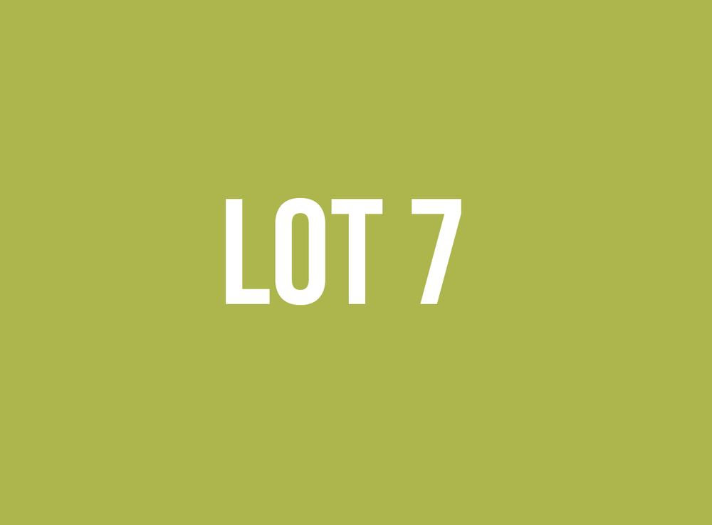 lot7.png