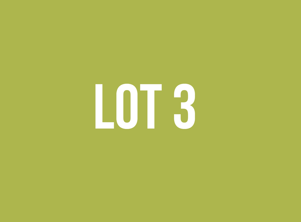 lot3.png