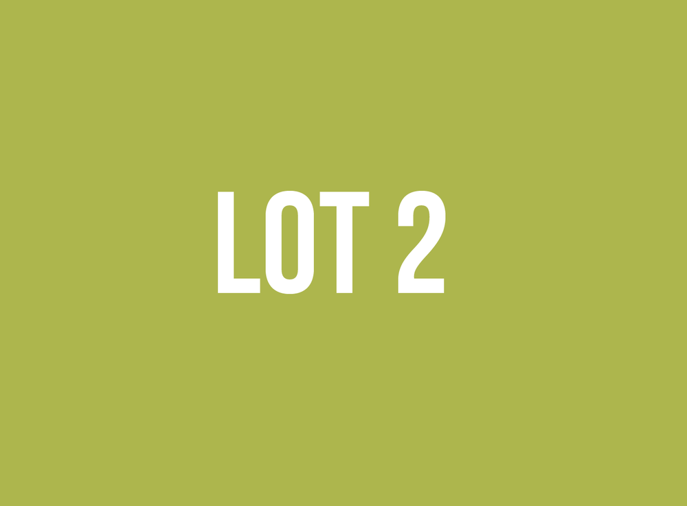 lot2.png