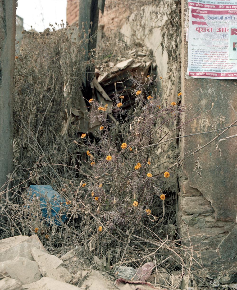 nepal_film027_lowres.jpg