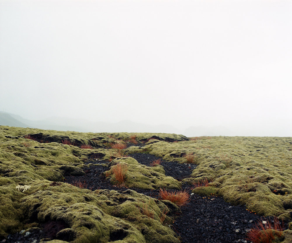 Landscape_004.jpg