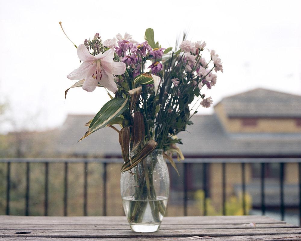 flowers001_lowres.jpg