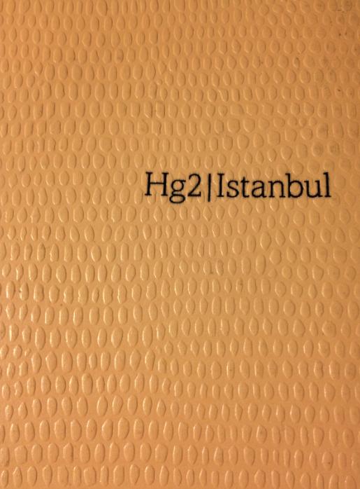 hg2:1.png