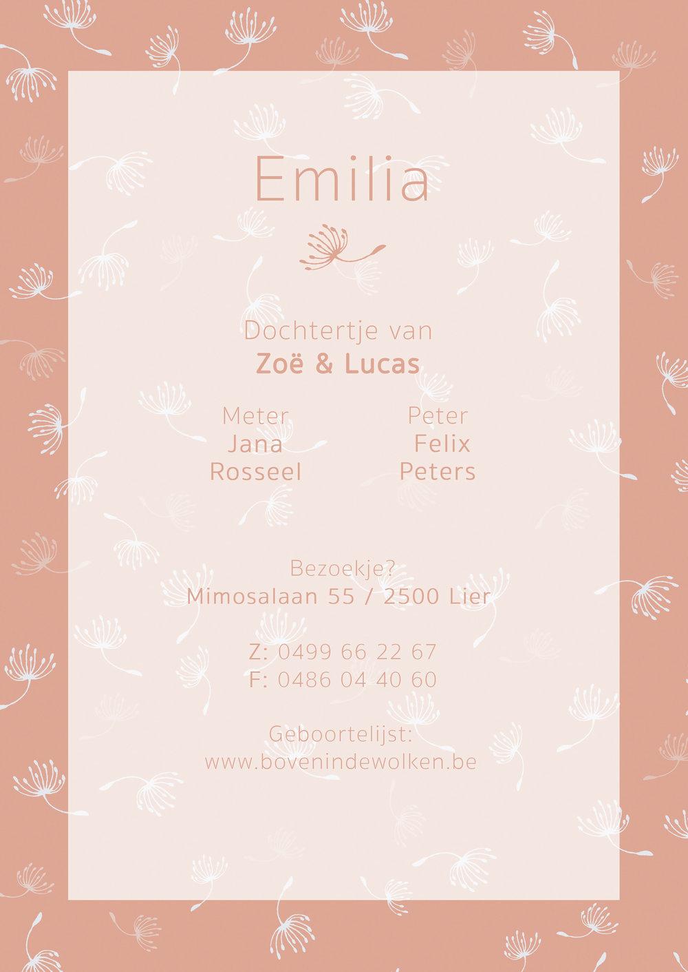 Emilia achter.jpg
