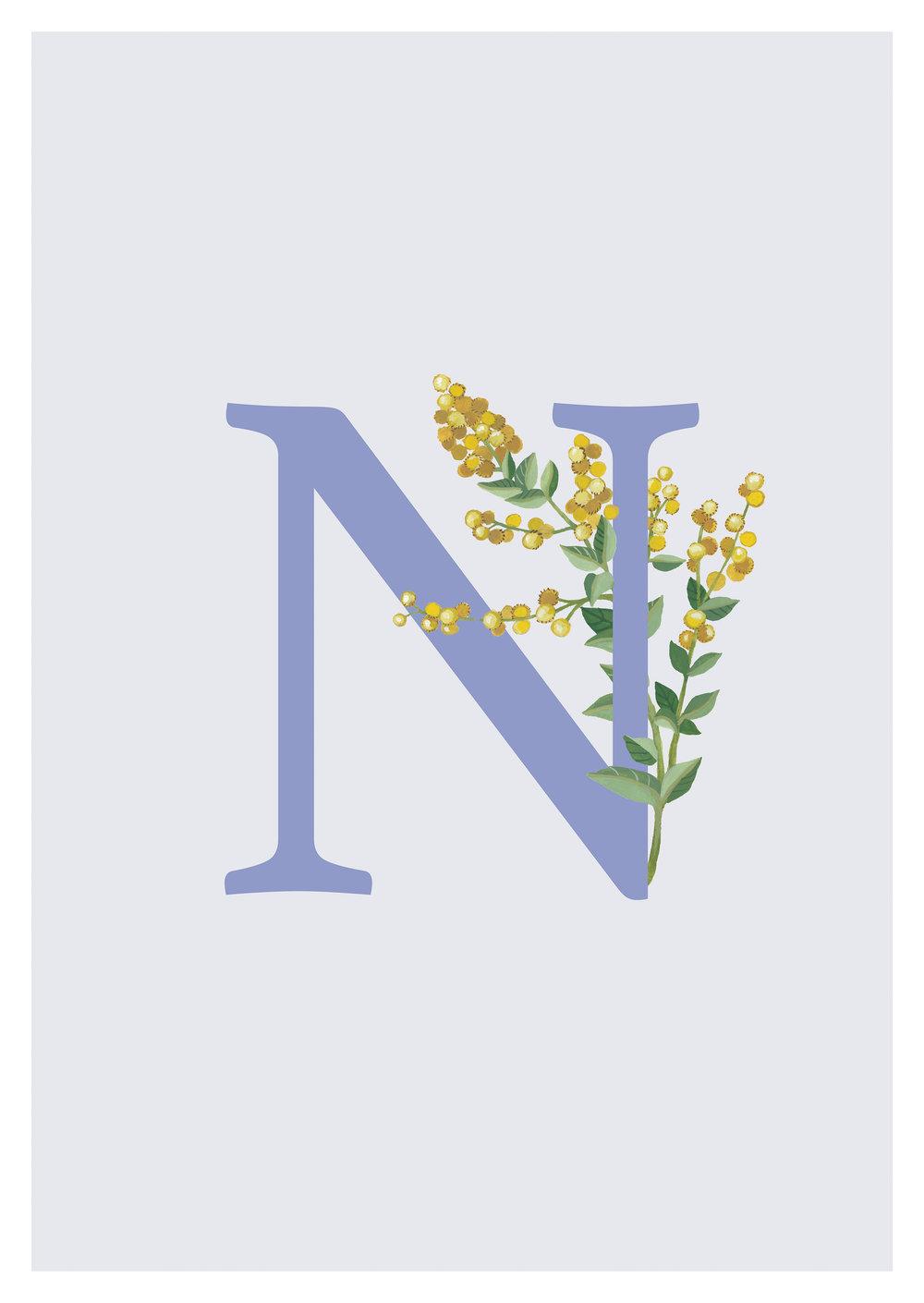 Nino voor.jpg