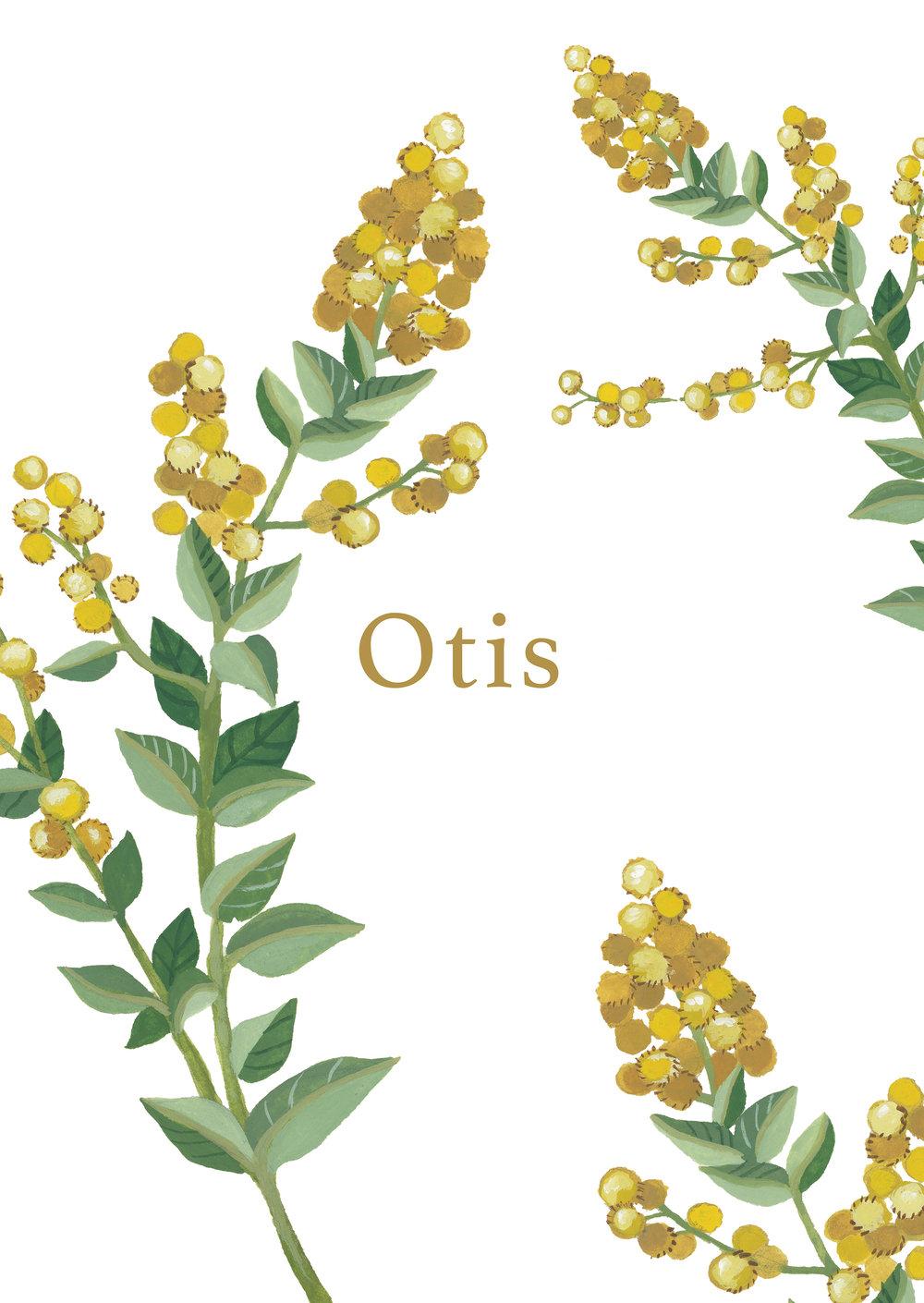 Otis voor.jpg