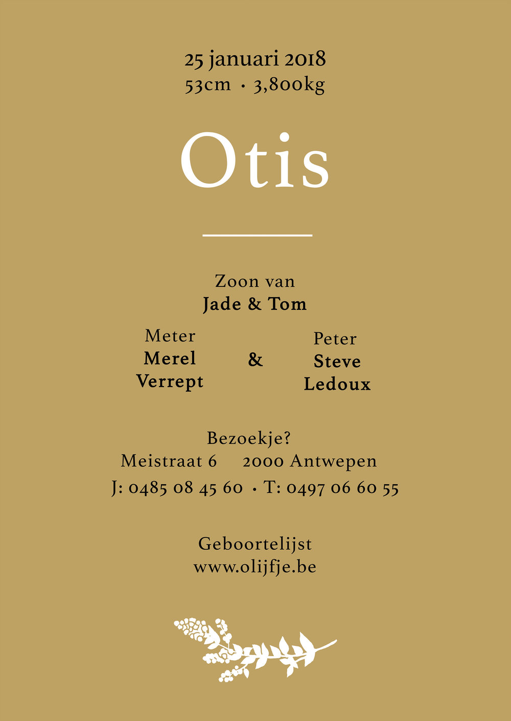 Otis achter.jpg