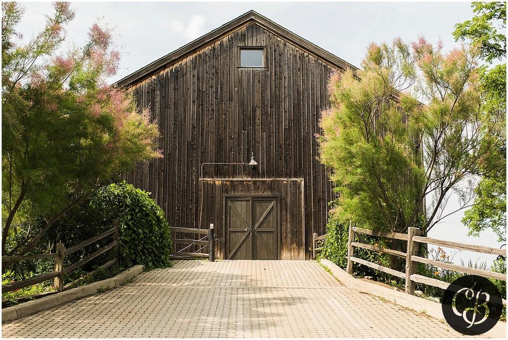Cobblestone-Farms-Wedding_0289.jpg