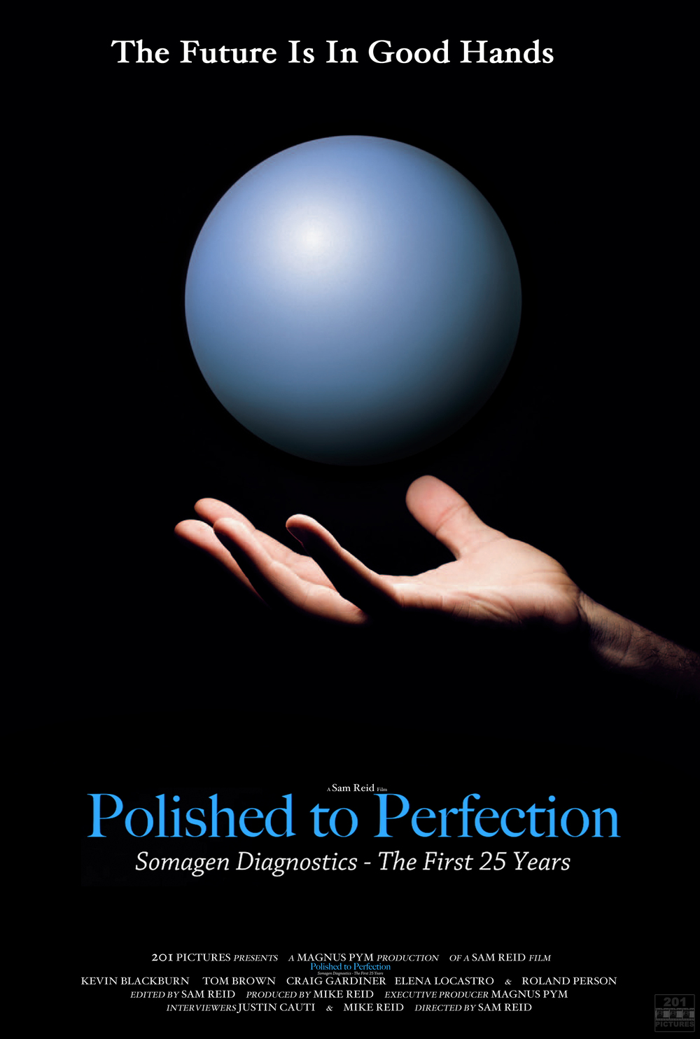 Polished to Perfection poster.jpg