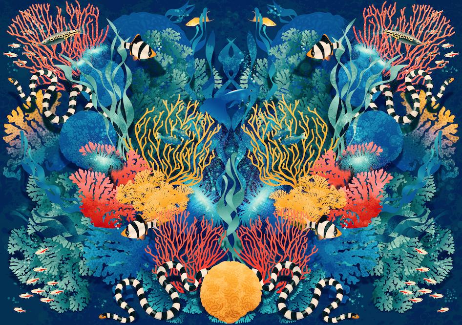 Carla Lucena Pattern