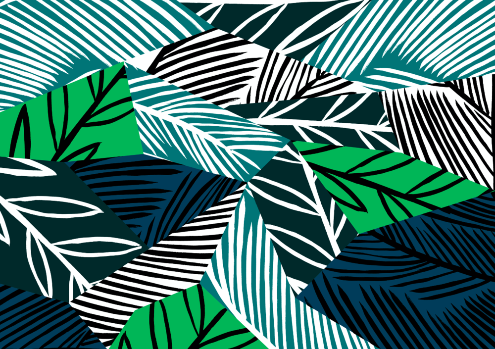 Carla Lucena Pattern Illustration