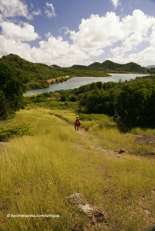 View from Fort Barrington National Park, Antigua