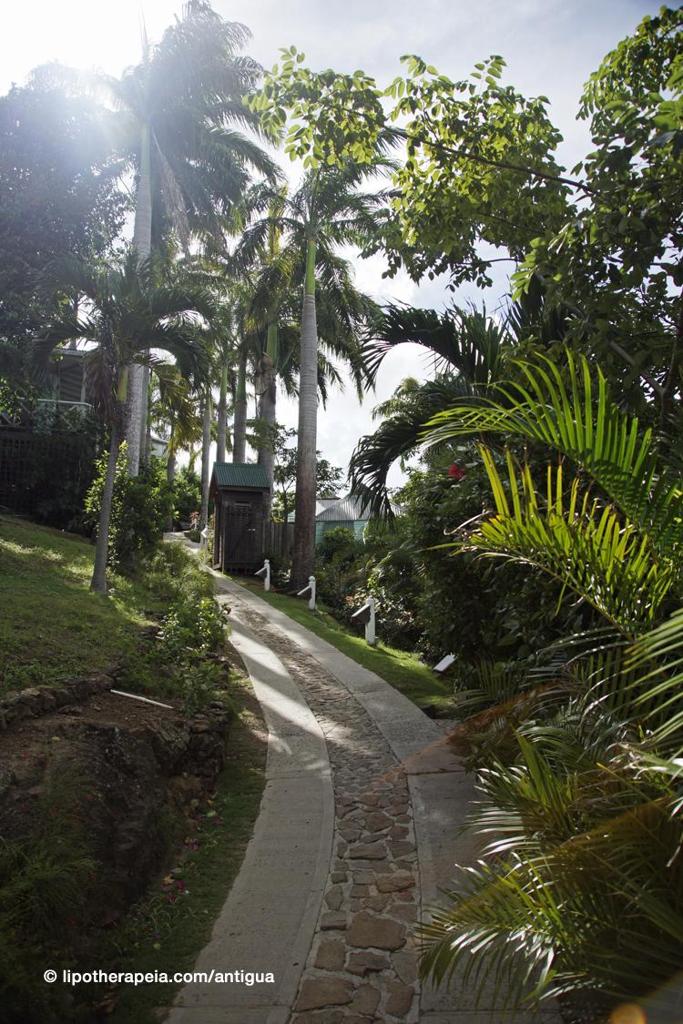 Cocos hotel, Jolly Bay, Antigua