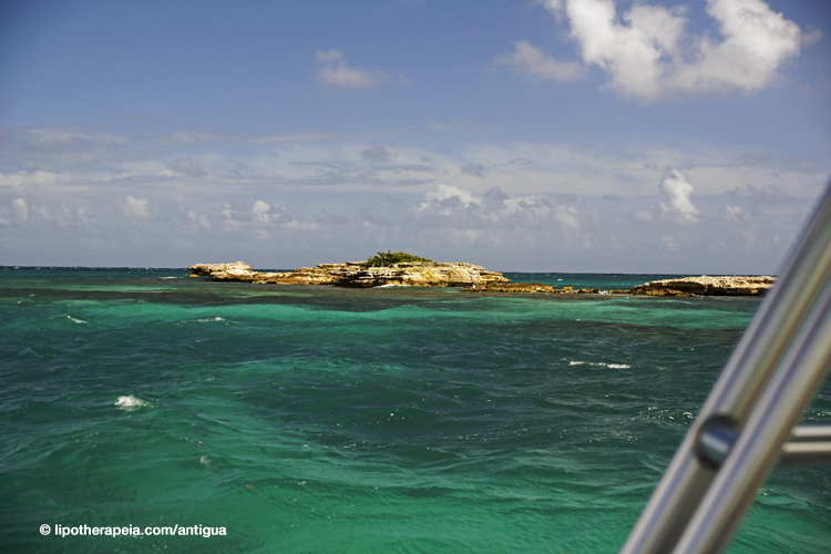 Coral rock near Devil's brige, Antigua