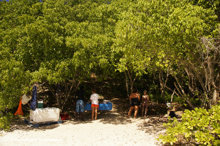 Lunch at Deep bay with the Sea Escape Tours, Antigua