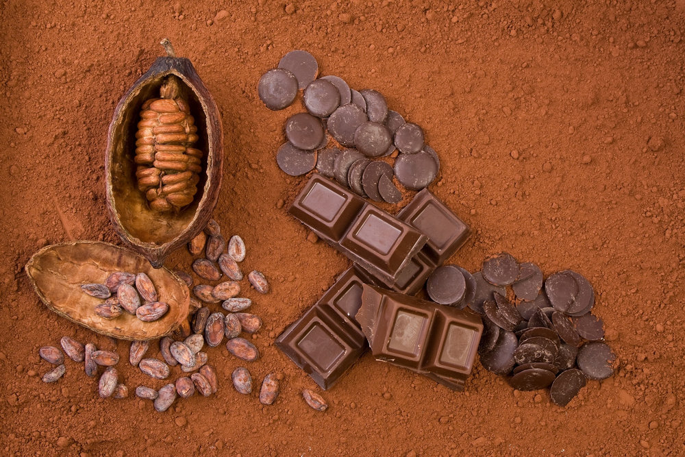 Cocoa flavanols for cellulite