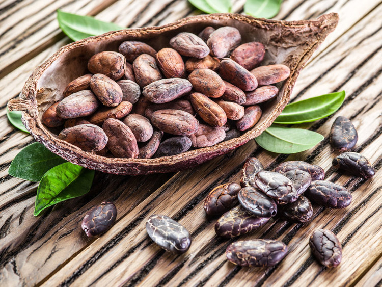 High flavanol cocoa and cellulite