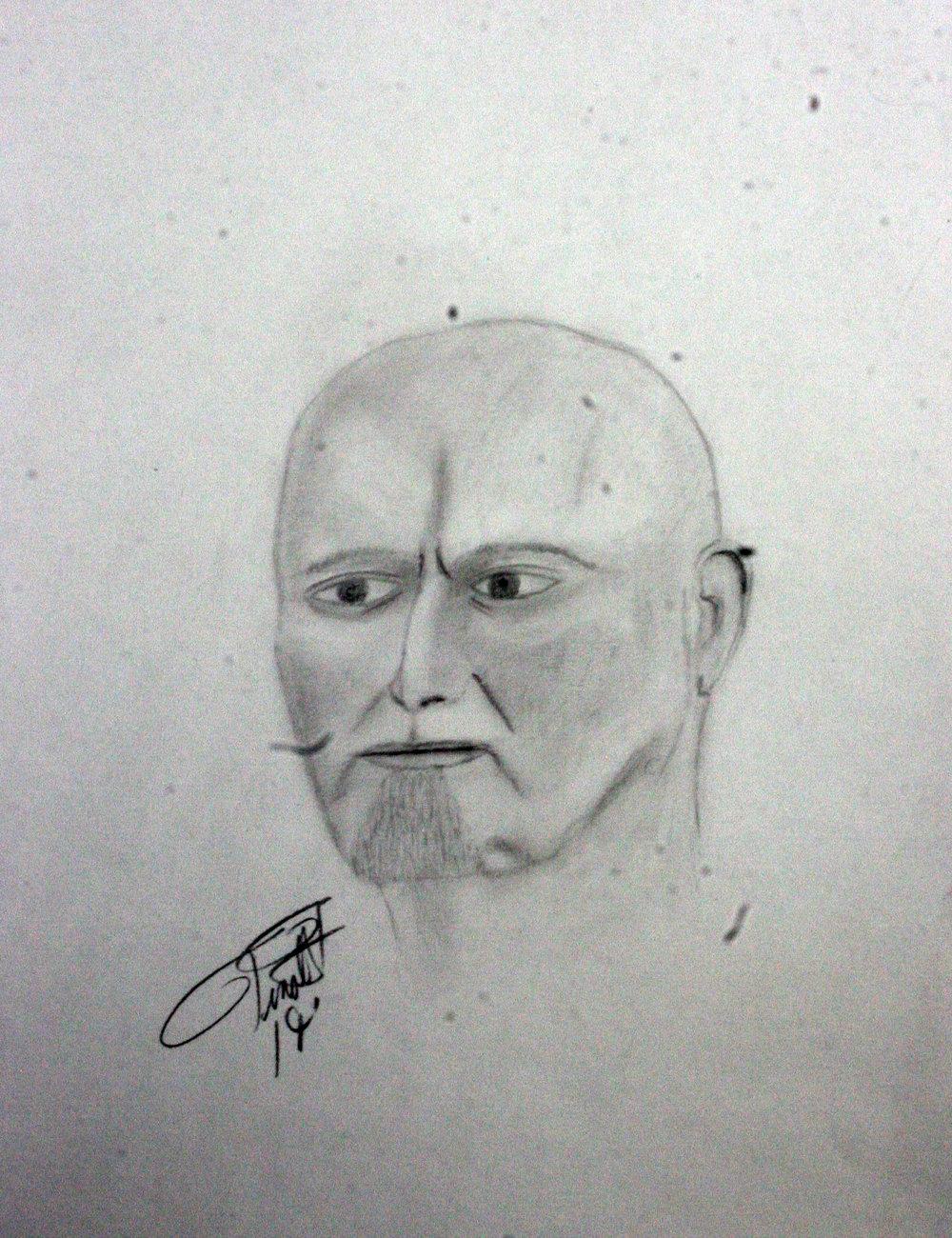 Timothy Tinnirello did this drawing.