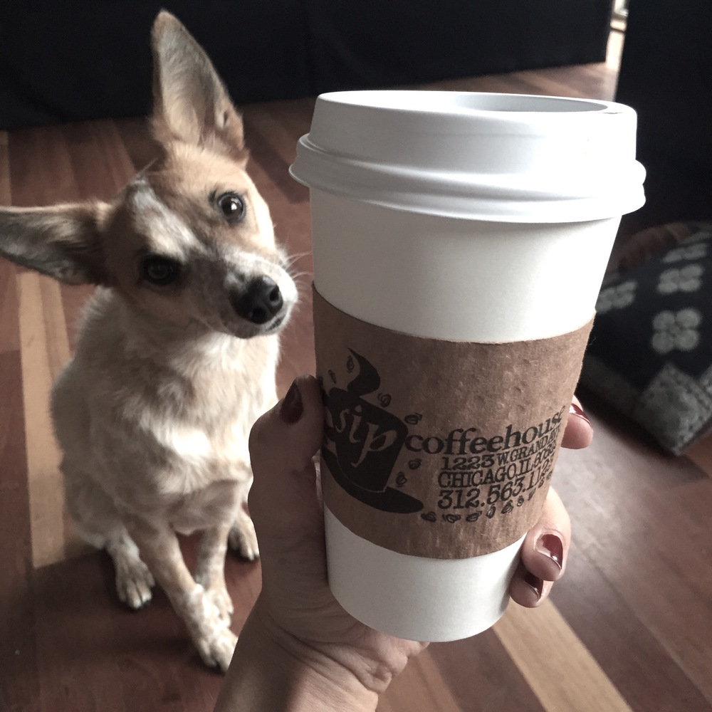 Keeping me sane and happy: my dog (Foxy) and coffee. Obviously cannot live without either one.