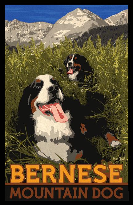 bernese.poster.2.11x17.jpg