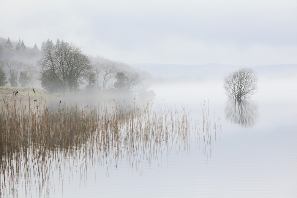 Lough MacNean, County Cavan, Ireland