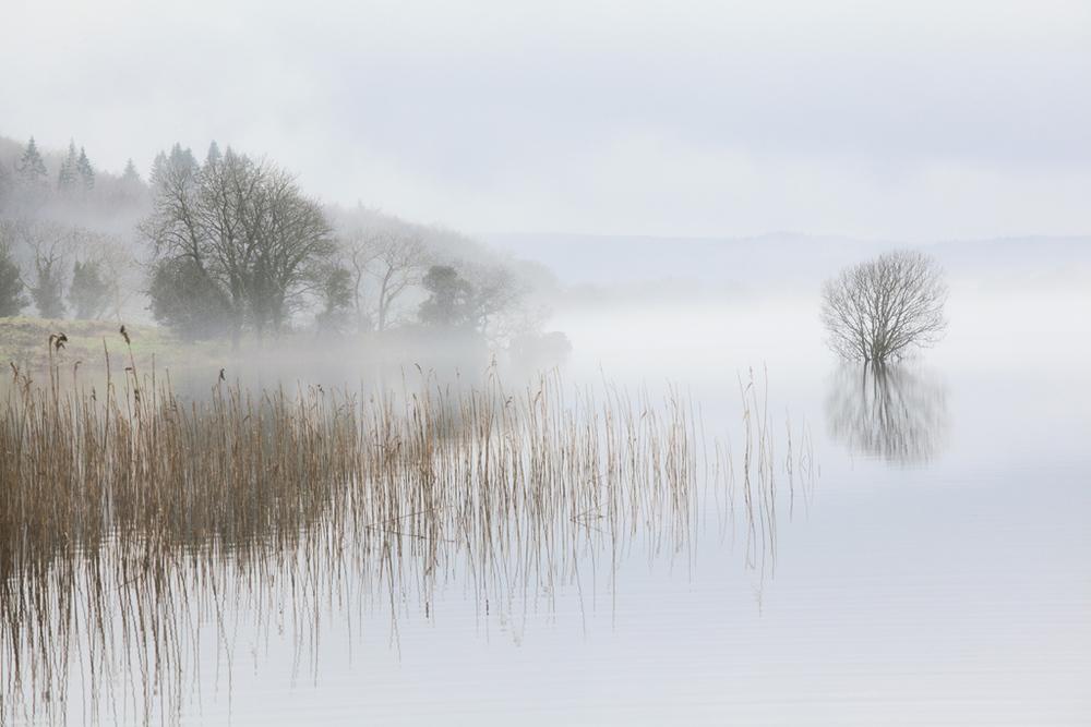Lough MacNean, County Cavan, Ireland