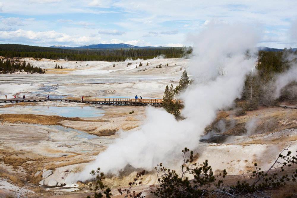 Norris Geyser Basin, Yellowstone National Park, Wyoming