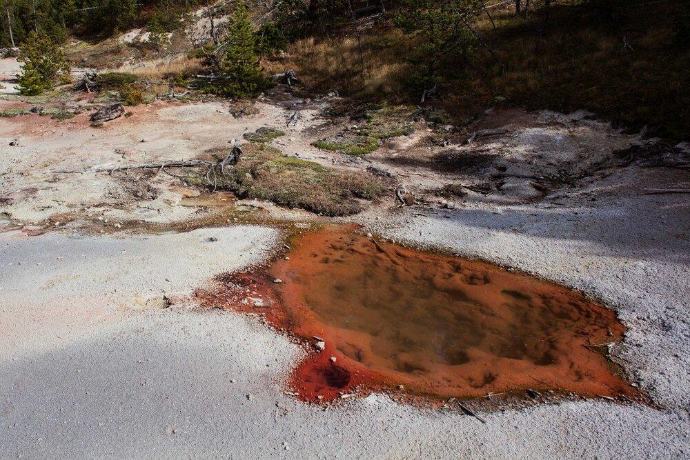 092815_Yellowstone-3134.jpg