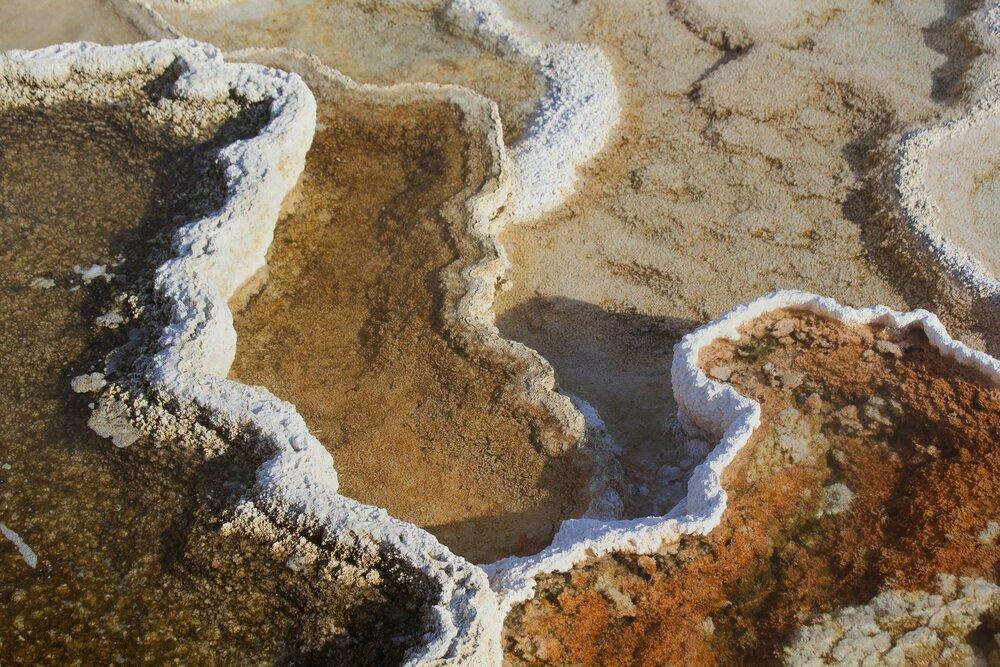 180426_Yellowstone-9972.jpg