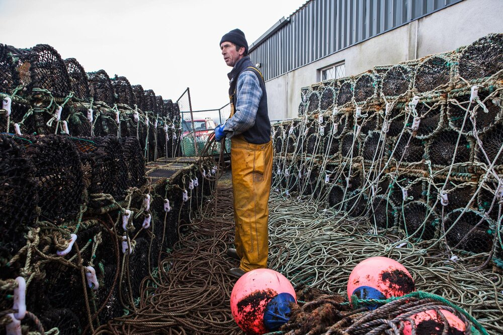 Bernard Heaney lifelong islander bringing his lobster pots in for the winter, mid November 2016