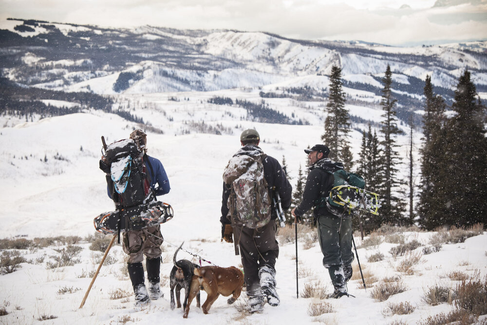 Boone Smith, wildlife capture specialist, Dr Mark Elbroch, Teton Cougar Project Director and wildlife cameraman Jeff Hogan head home after a successful capture day in the field. The Teton Cougar Project is entirely funded by private individuals and foundations. Due to pressure also from private individuals in the region especially local hunters and ranchers, as of December 2016 Wyoming Fish and Game will not be renewing the projects license to conduct research during the winter. Some hunters have come out in defense of the importance of the research in understanding the local cougar population.
