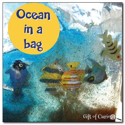 Ocean-in-a-bag-Gift-of-Curiosity.jpg