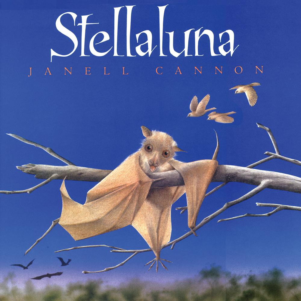 Stellaluna01.jpg