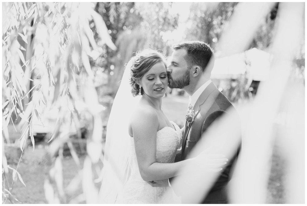 willow tree ohio wedding_0053.jpg