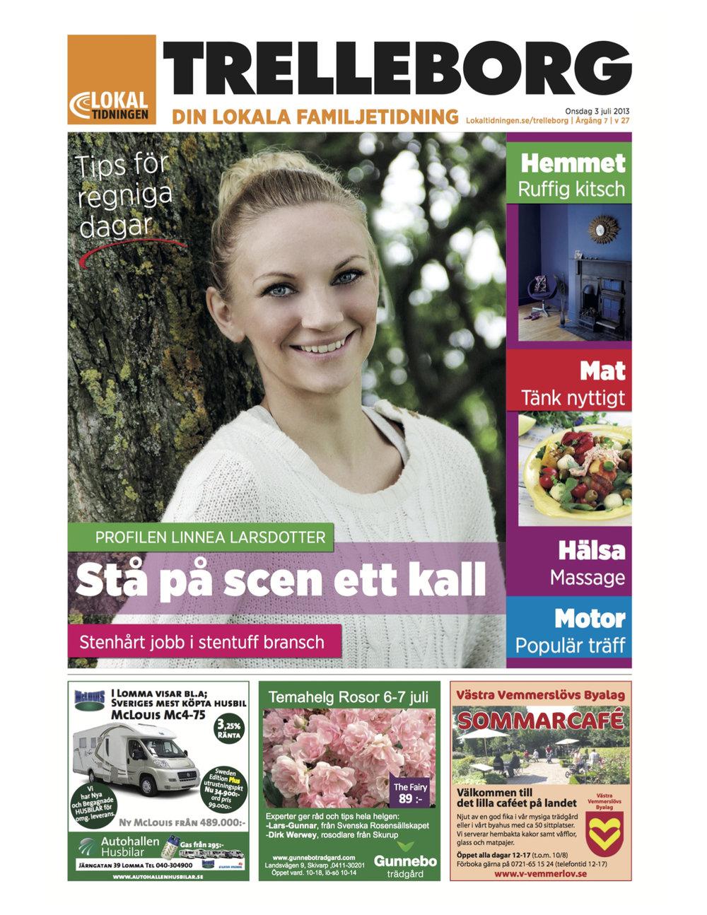 Lokaldelen 2013 cover - Linnea Larsdotter.jpg