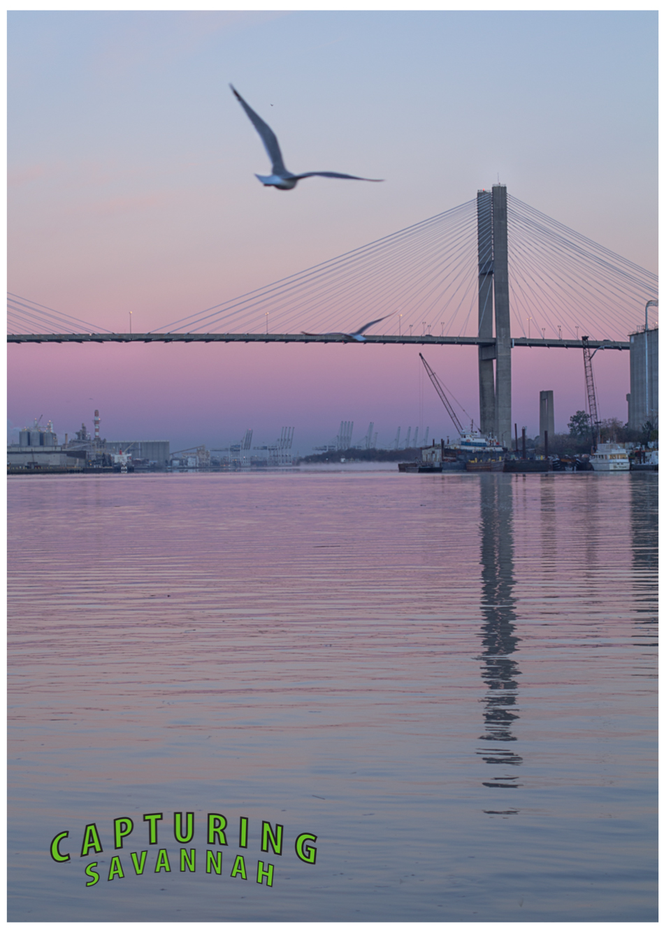 ©2014 Capturing Savannah_sunrise_2.26.14-2.jpg