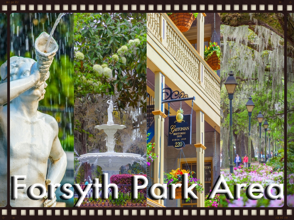 Forysth Park Area Photography Walking Tour