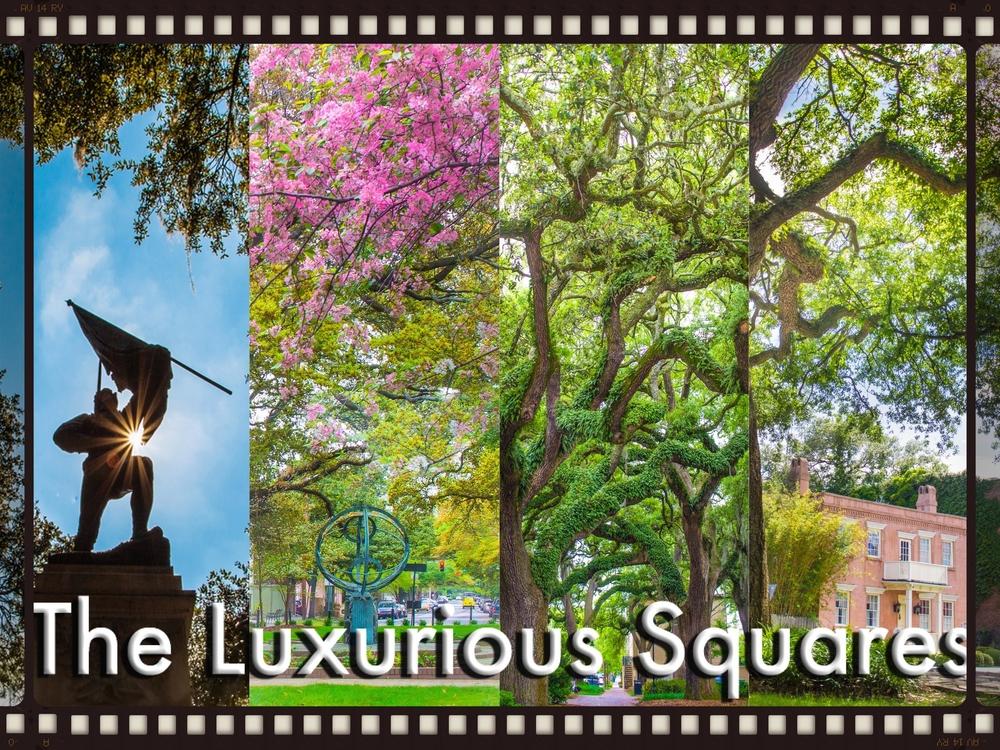 ®2015CapturingSavannahPhotographyWalkingTours_TheLuxuriousSquares_TitleCover_LOres.jpg