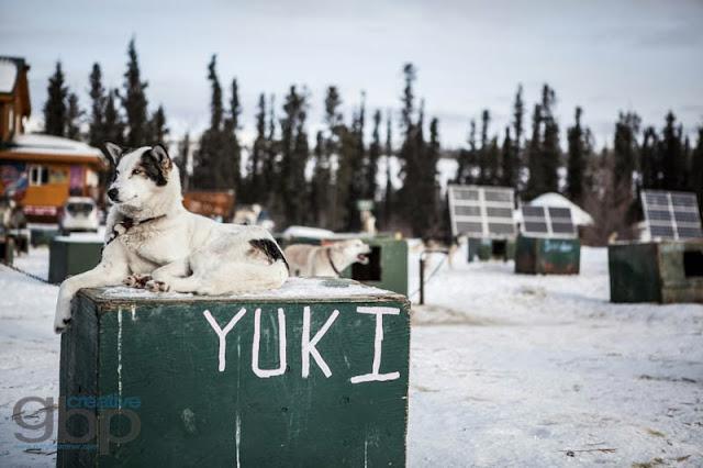 20130222_Rob_Yukon_Trip_DS_GBP_006_web.jpg