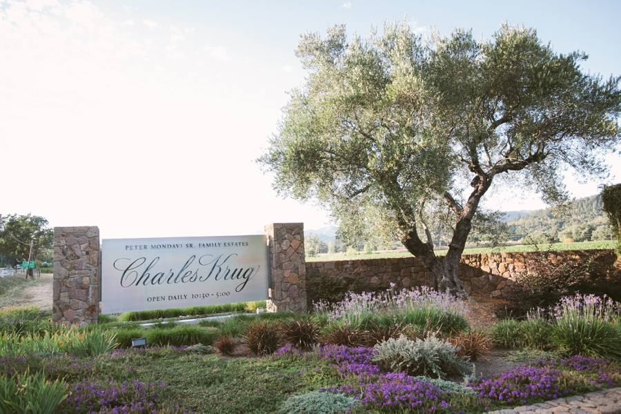12_Charles_Krug_Winery_St_Helena_California_Wedding_Photo.JPG